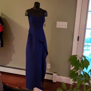Brand New BCBG Maxazria Elegant Lined Long Dress